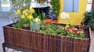 Hochbeete für Garten, Terrasse und Balkon   MDR.DE