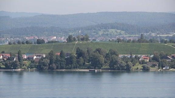 Blick über Bodensee auf Landschaft.