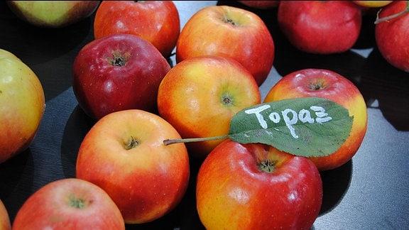 """Rot-gelbe, reife Äpfel mit einem grünen Blatt, auf dem """"Topaz"""" steht"""