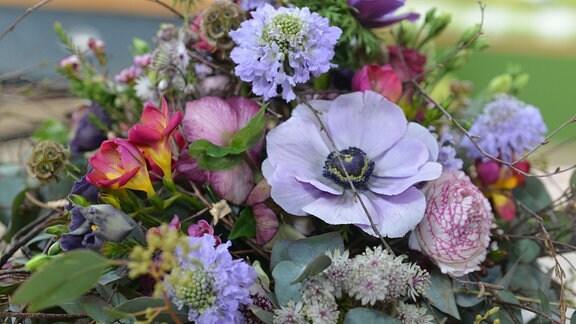 bunter Blumensterauß Anemone