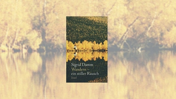 """Buchcover: """"Wandern - Ein stiller Rausch"""" von Sigrid Damm"""