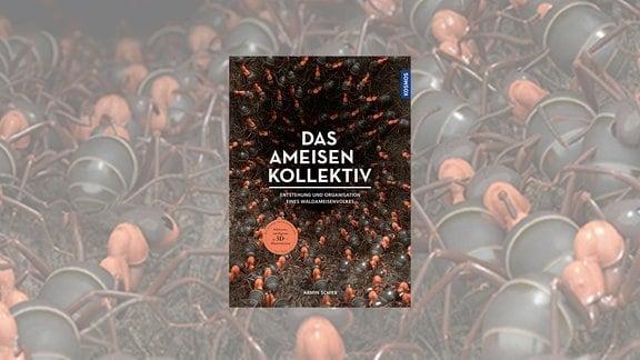 Buchtipp Ameisenkollektiv