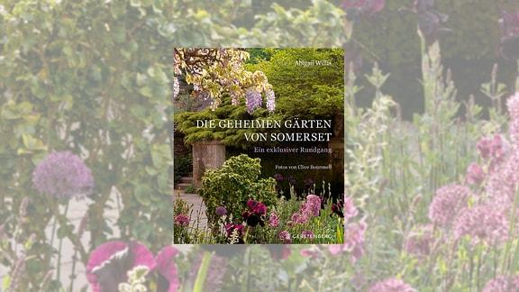 Buchcover Die geheimen Gärten von Sommerset von Abigail Willis