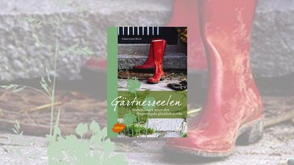 Cover des Buches Gärtnerseelen von Christiane Büch
