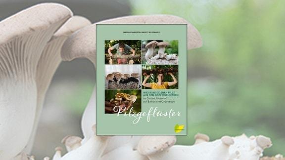 Buch des Monats - Pilzgeflüster
