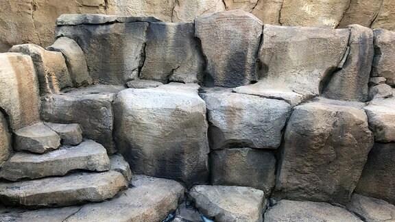 Anlage künstlicher Teiche im Danakil-Haus – bislang noch ohne Wasser.