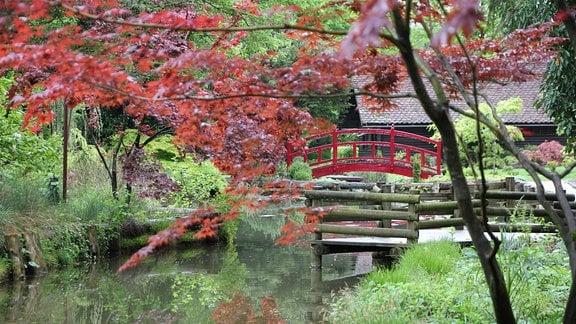 Rote Holzbrücke im Park Mozirski Gaj
