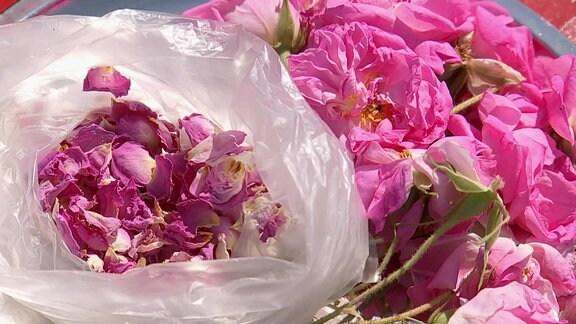 in einer Tüte sind Rosenblüten