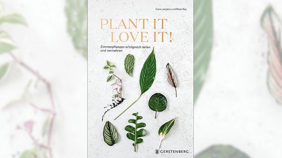 Buchcover: Blätter verschiedener Zimmerpflanzen