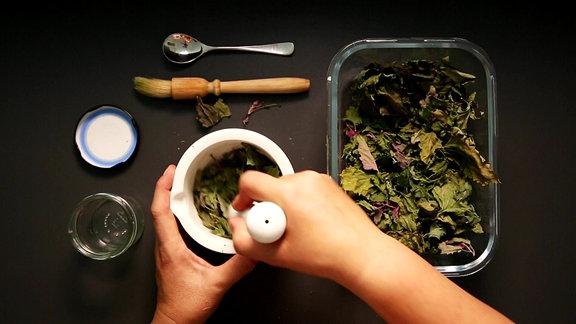 In einem Mörser werden getrocknete Blätter gemahlen.