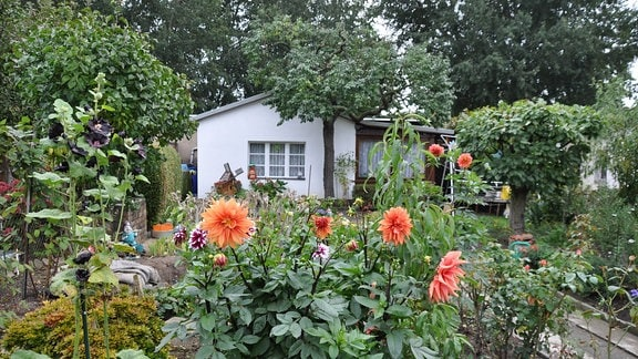Ein Kleingarten in der Anlage Dr. Schreber in Leipzig