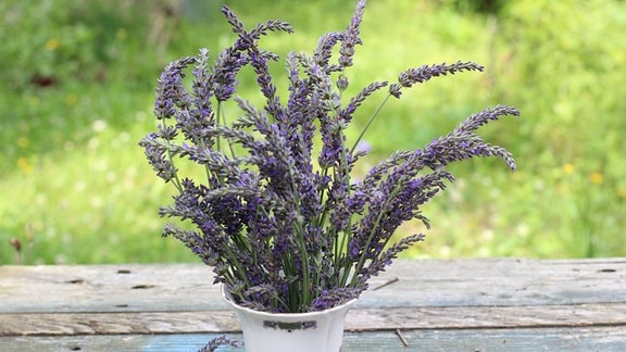 Lavendel in einer Vase