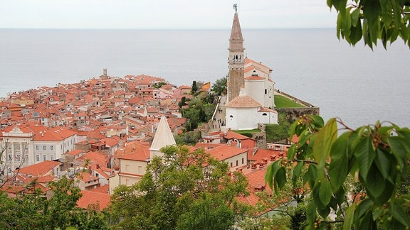 Altstadt von Piran in Slowenien am Mittelmeer