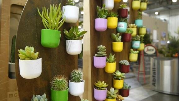 Pflanzenmesse