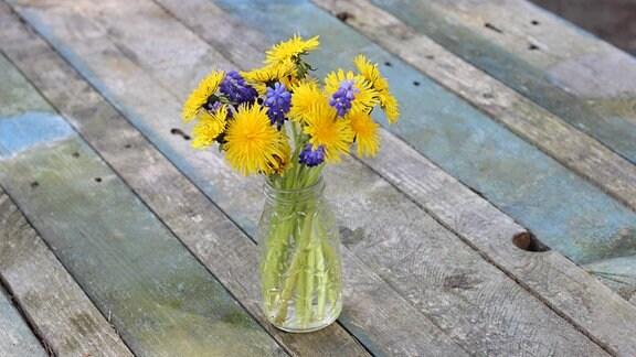 Löwenzahnblumen in einer Vase