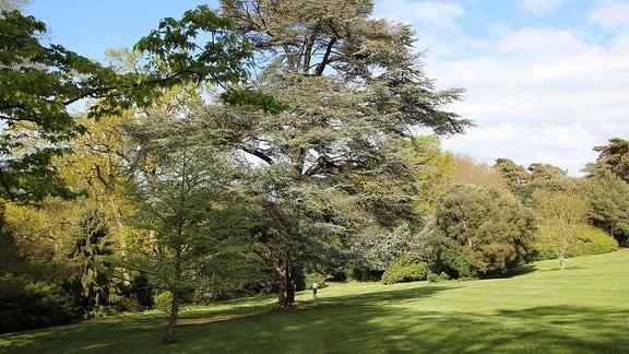 Landschaftspark Bois des Moutiers in Frankreich.