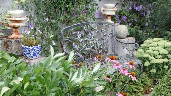 Eine Metallbank steht zwischen Blumen in einem Garten