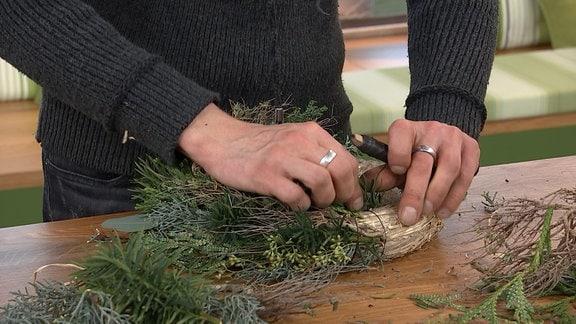 Hände binden Tannengrün auf einen Strohrohling zu einem Adventskranz