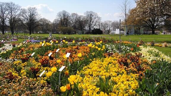 Großes Blumenbeet im Egapark zur Bundesgartenschau 2021