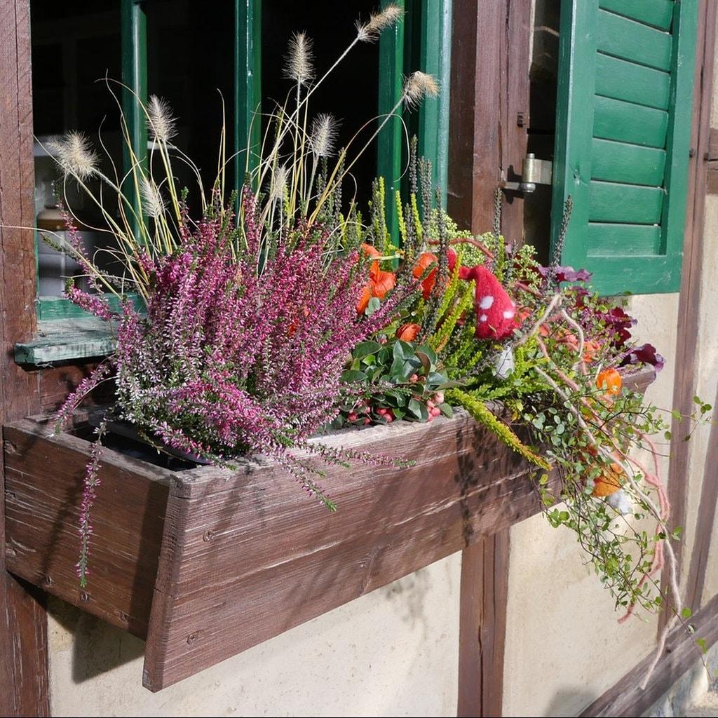 Herbst Und Winter Auf Balkon Und Terrasse Mdr De