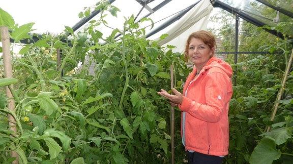 Gartenexpertin Brigitte Goss steht in ihrem Gewächshaus zwischen großen, buschigen Gurken und Tomatenpflanzen