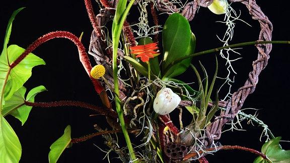 Mit Orchidee, Tulpen und Blättern dekoriertes, geflochtenes Herz