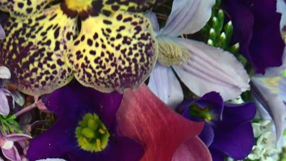 Bunte Blüten von Orchideen, Clematis und Calla