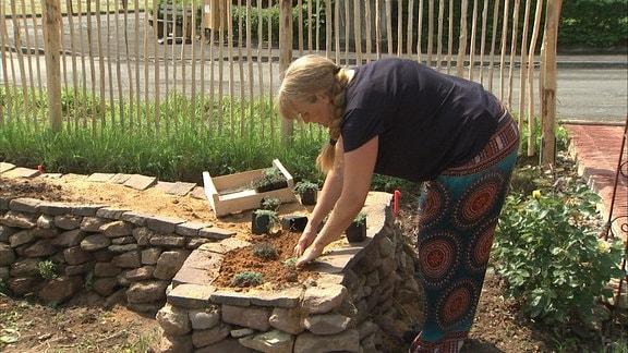 eine Frau baut eine Bank aus Steinen, in der Mitte ist Erde, dort wachsen Kräuter