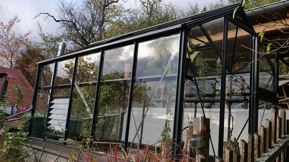 Gewächshaus aus Glas in Garten