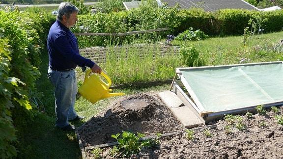 Gartenexperte Klaus Eckardt gießt kegelförmiges Hügelbeet