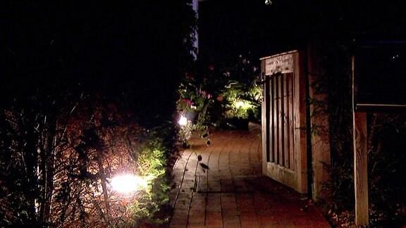Weg und Gartentor mit Beleuchtung