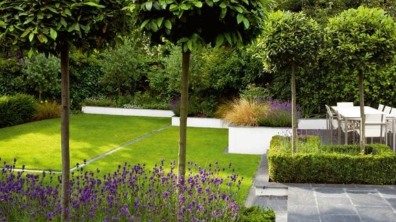 Ein Garten mit Rasen, Bäumen und Stauden der von einer Mauer umgeben ist, die nach hinten immer flacher wird.