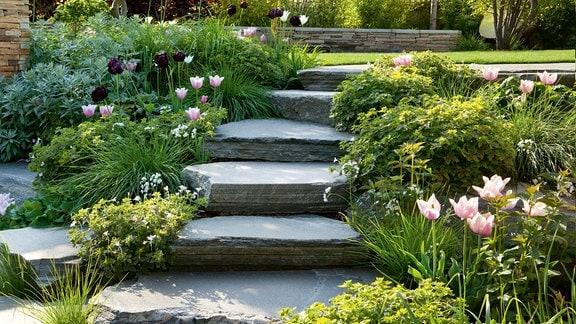 Steinstufen führen auf eine höhergelegte Rasenfläche in einem Garten.