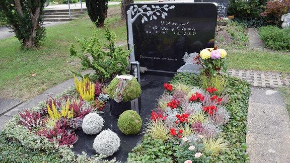 Grabbepflanzung für den Herbst