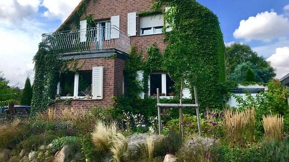 Ein Einfamilienhaus im Klinkerstil, bis unters Dach bewachsen, davor ein hübscher Vorgarten.