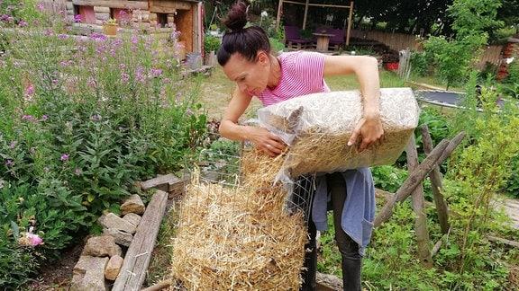 Eine Frau füllt in einen Kartoffelturm eine letzte Schicht Stroh ein.