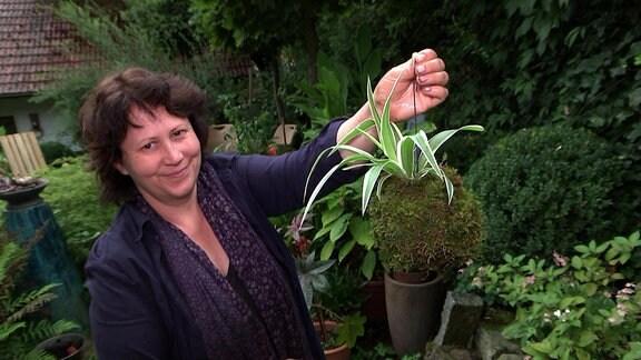 Floristin hält Kokedama-Mooskugel mit Grünlilie