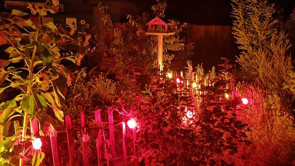Eine Lichterkette schmückt einen Gartenzaun.