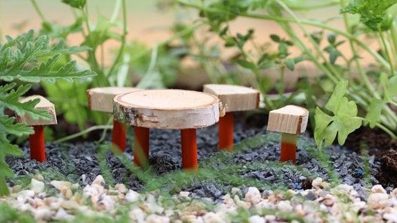 Minigarten Kinder
