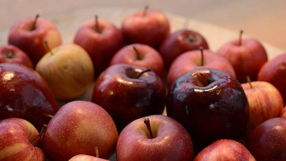 viele rote Äpfel