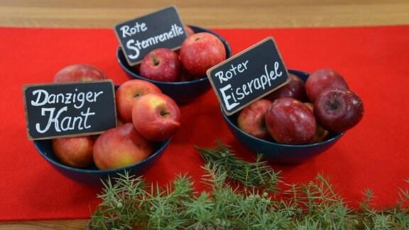 Auf einem Tisch stehen Schalen mit roten Äpfeln