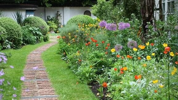 Mehrere verschiedene, blühende Pflanzen, darunter Zierlauch, in einem Staudenbeet an einer Rasenfläche mit einem Weg in einem englischen Garten