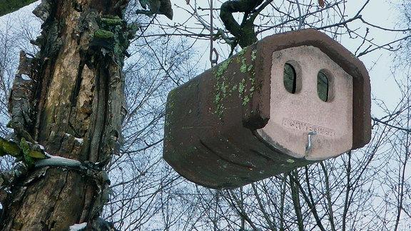 Vogelkasten für Nischen- oder Halbhöhlenbrüter.