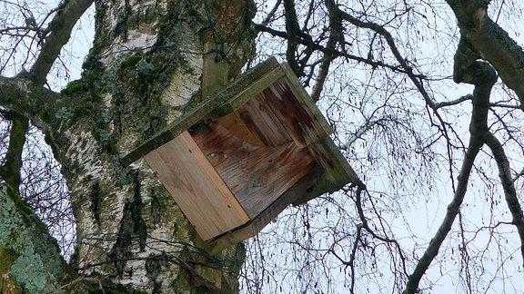 Eine sogenannte Halbhöhle aus Holz.