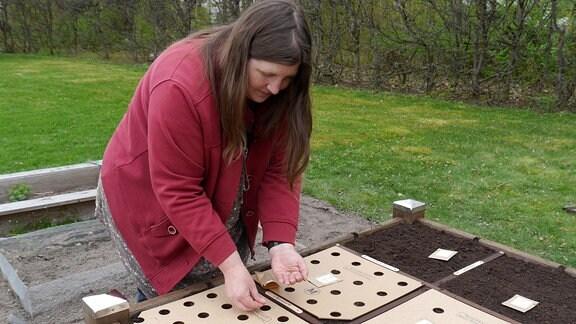Tanja Tomaske steht an einem von ihr entwickelten, quadratförmigen Hochbeet und legt Samen mit Hilfe von Saatscheiben in die Erde