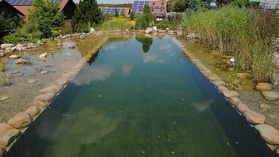 Ein rechteckiges, mit Wasser gefülltes und von Steinen umrandetes Becken mit angrenzender Uferzone, Kies und Wasserpflanzen, das als Schwimmteich dient