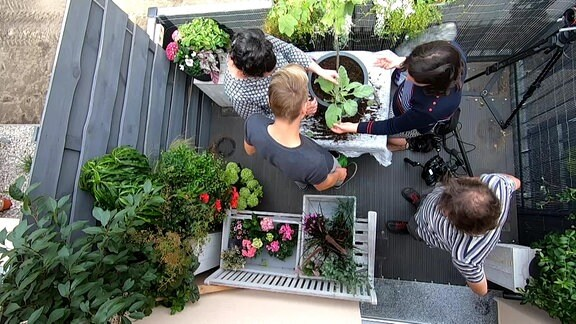 Ansicht eines Balkons aus der Vogelperspektive, mehrere Menschen stehen auf dem Balkon und pflanzen etwas