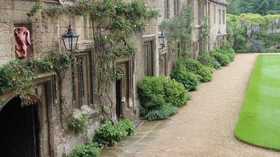 Mittelalterliche Häuser mit Rankenbepflanzung im Worcester Collage Garden in Oxford.