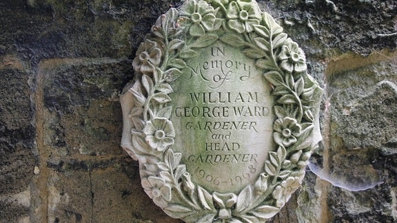 Gedenktafel an Chefgärtner William George Ward im Worcester Collage Garden in Oxford. Auf der Tafel steht: In Memory of William George Ward gardener and head gardener 1906 - 1968.