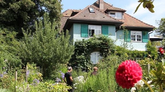 Garten vor einem schönen hellblauen Haus mit grünen Fensterläden